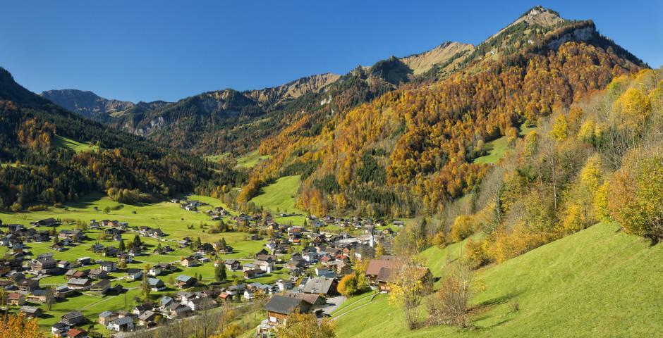 Idyllisches Dorf im Bregenzerwald - Bregenzerwald