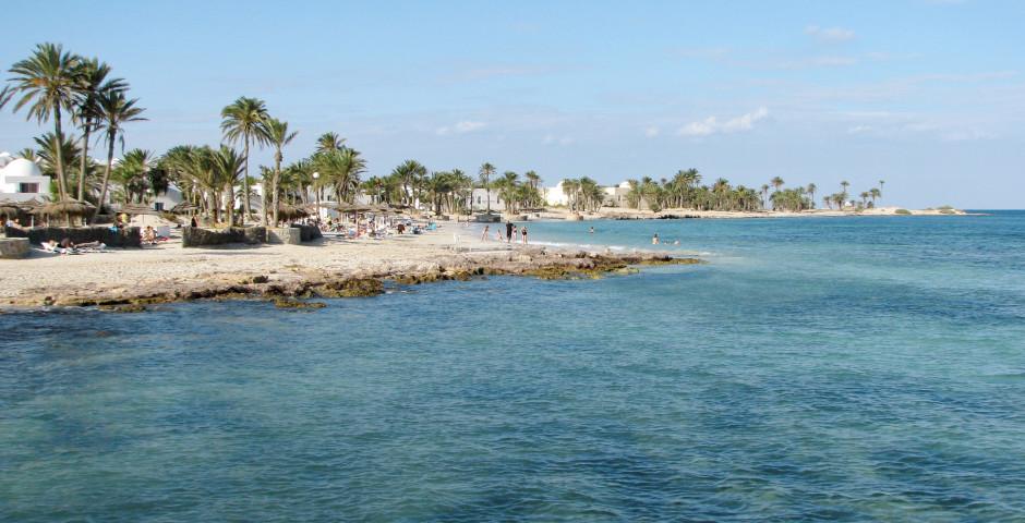 Palmenstrand auf der Insel Djerba - Djerba