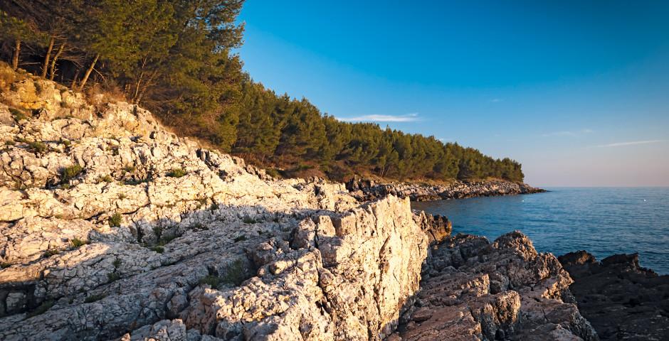 Pula (Istrie)