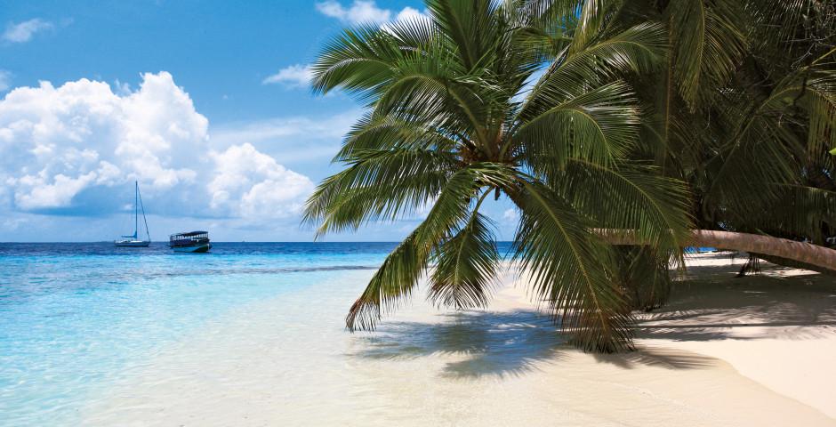 Fihalhohi Island Resort - Süd Male Atoll