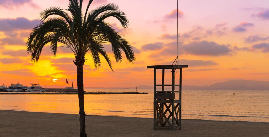 El Arenal - El Arenal / Playa de Palma