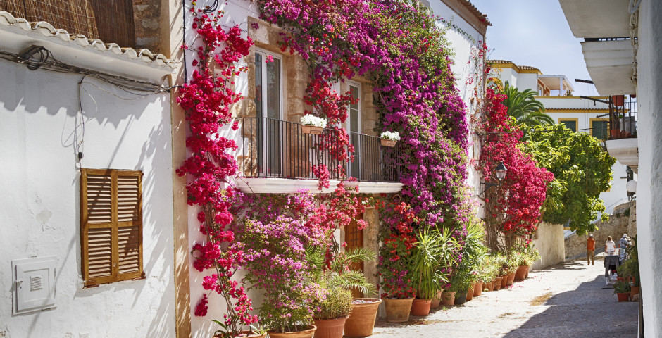Gasse in Ibiza-Stadt mit Bougainvillea Blumen - Ibiza-Stadt