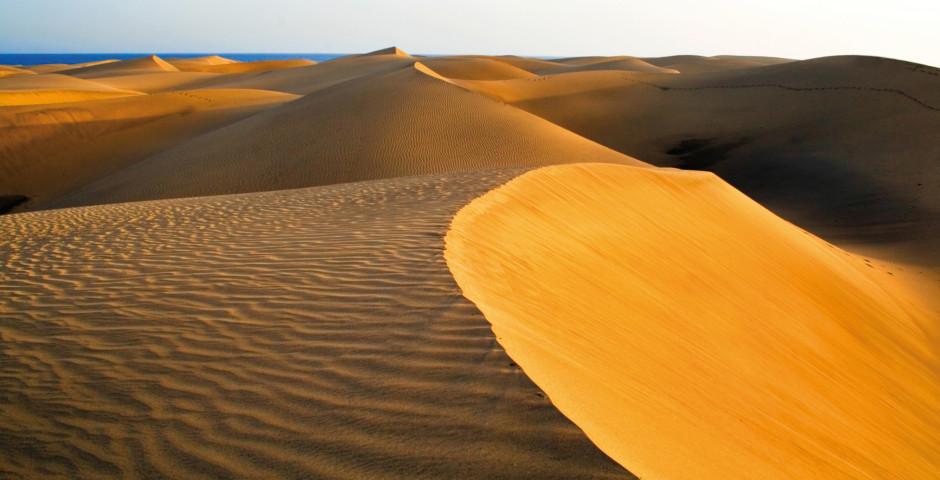 Dunes mouvantes de Maspalomas - Maspalomas