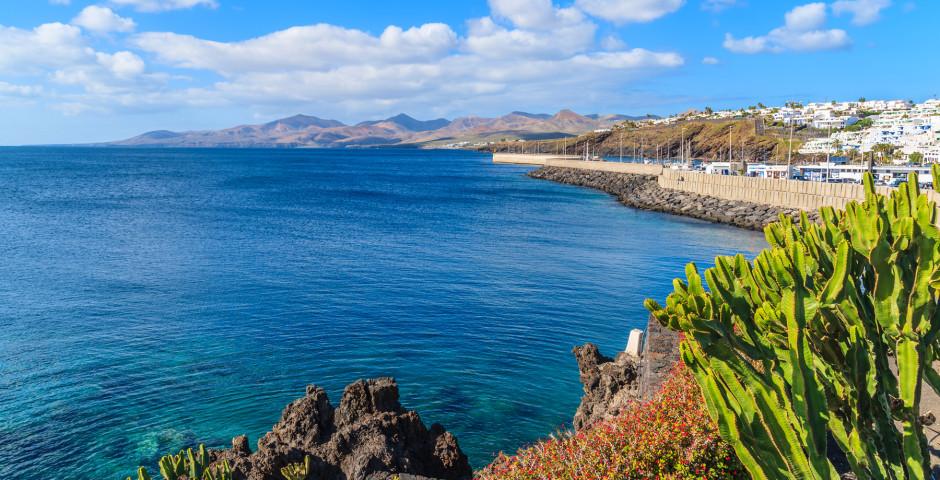 Vue sur le port de Puerto del Carmen - Puerto del Carmen / Puerto Calero
