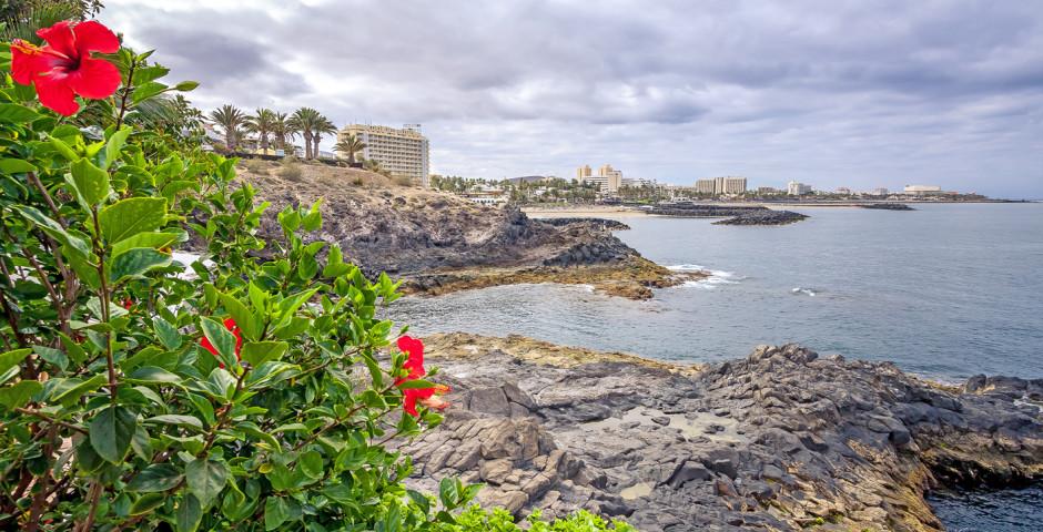 Bucht bei Playa de las Americas - Playa de las Americas