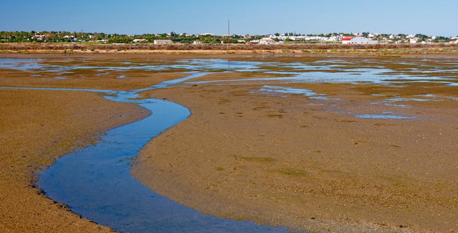 Ria Formosa Natural Park - Faro