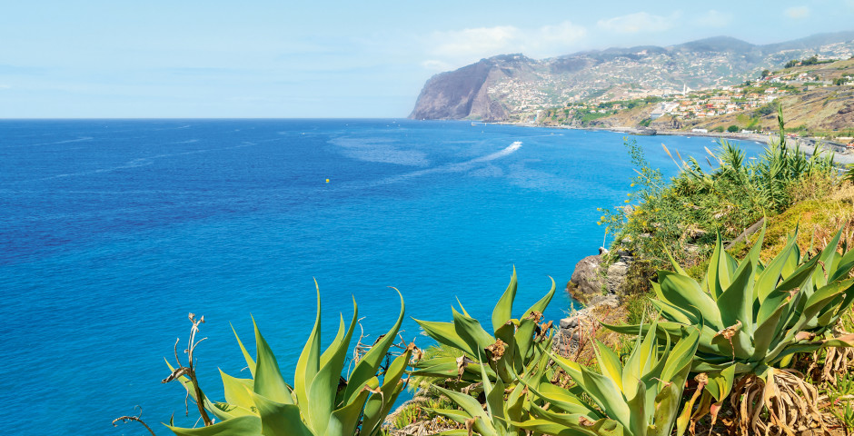 Blick auf das Cabo Girao - Funchal / Monte