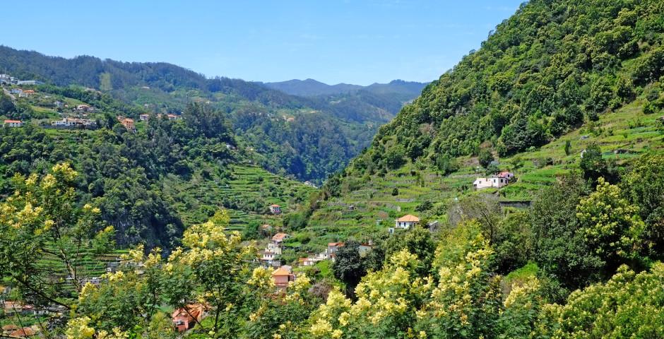 Ribeira de Machico-Tal - Santo da Serra