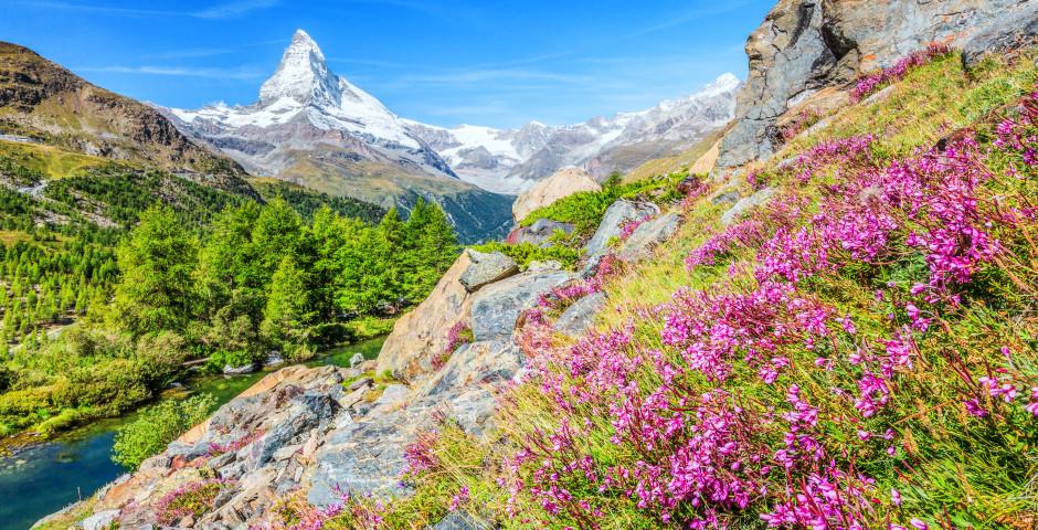 Zermatt im Sommer - Zermatt
