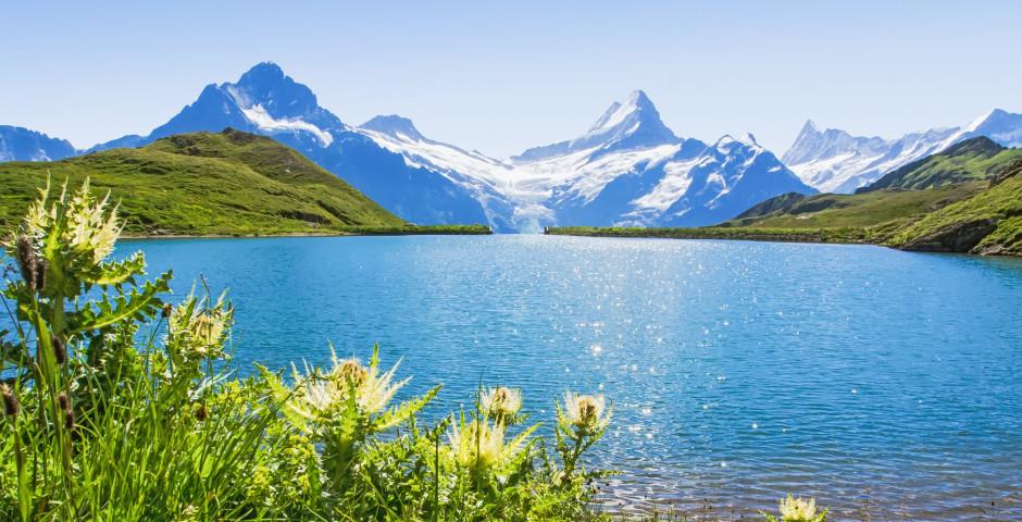 Bachsee - Grindelwald