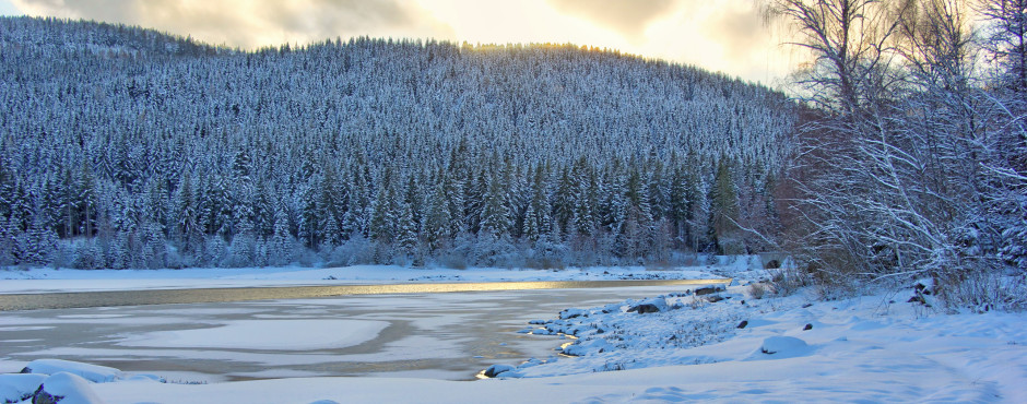 Winterstimmung am Schluchsee