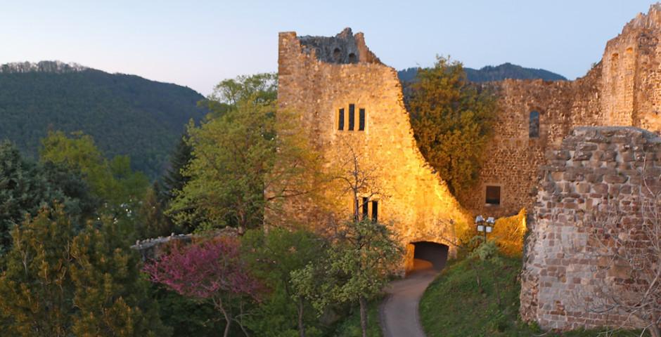 Schloss in Badenweiler