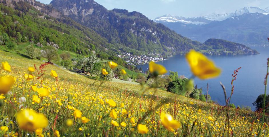 Vitznau, © Luzern Tourismus - Weggis