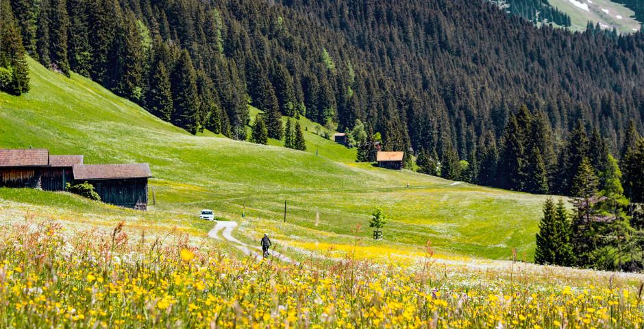 Sportlich unterwegs beim Mountainbiken - Lenzerheide
