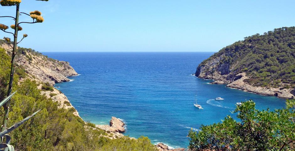 Blick auf die Bucht - Cala Llonga