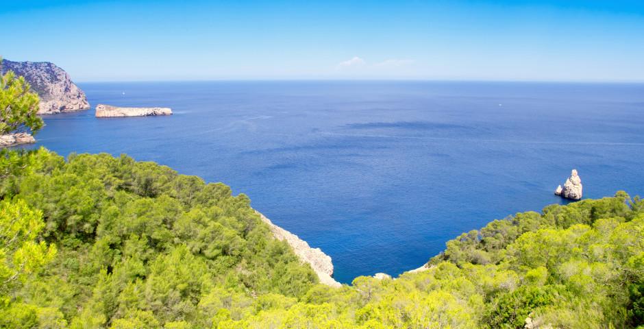 Panoramablick auf die Bucht von San Miguel - San Miguel