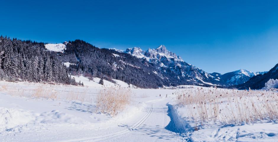 Winter im Tannheimertal - Grän-Haldensee
