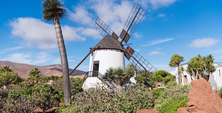 Traditionelle Windmühle in Antigua - Fuerteventura - Landesinneres