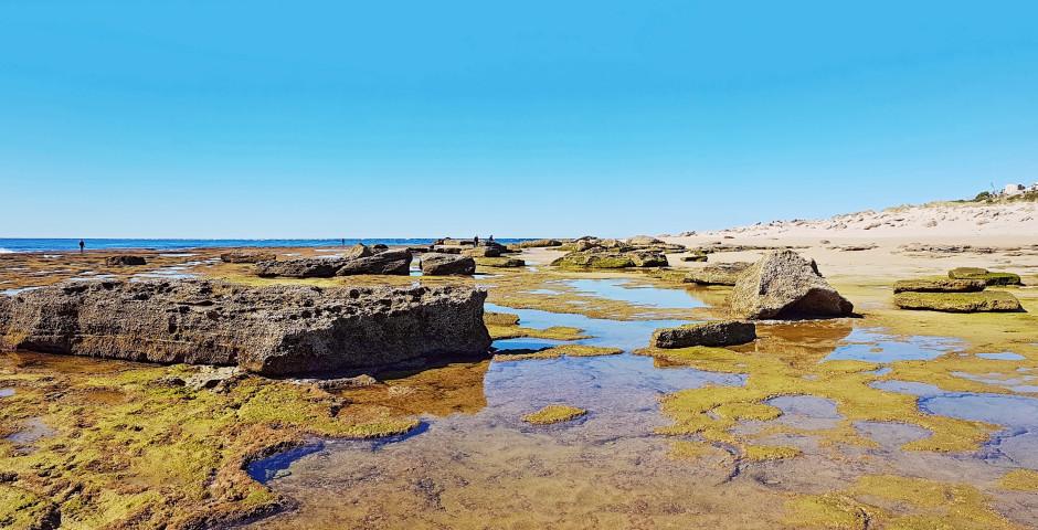 Faro de Trafalgar - Vejer de la Frontera