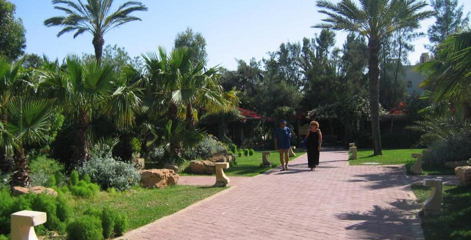 Laico Djerba