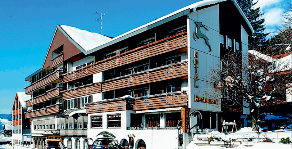 Hôtel Hirschen