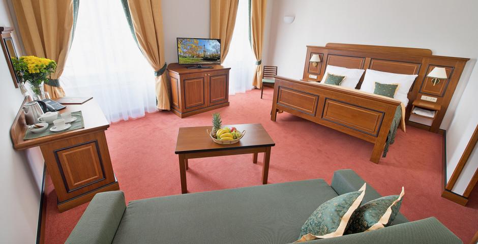Hôtel U Medvidku