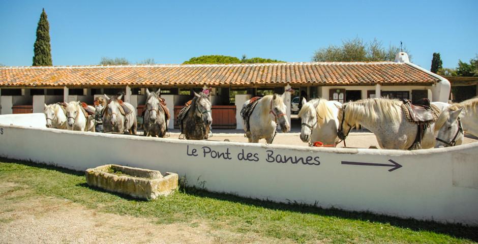 Resort L'Auberge Cavalière du Pont des Bannes