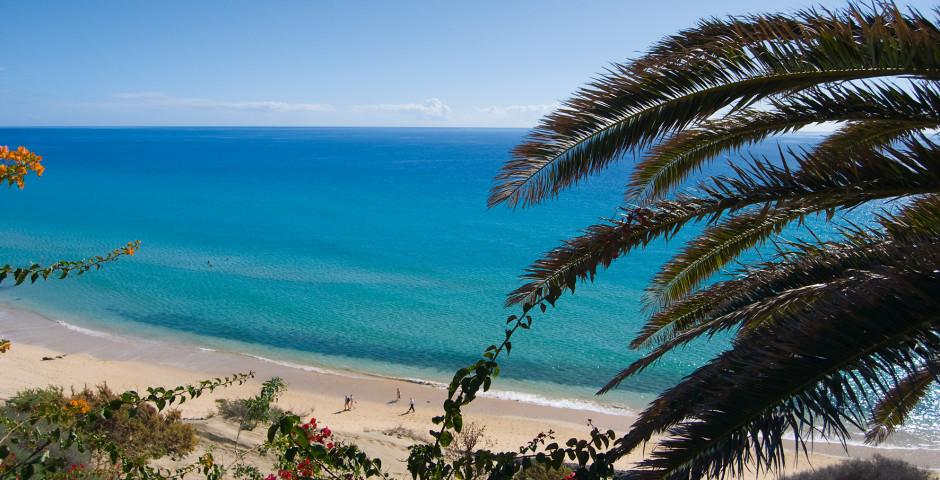 SBH Club Paraiso Playa