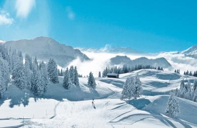 Ferien im Schnee - Skiferien