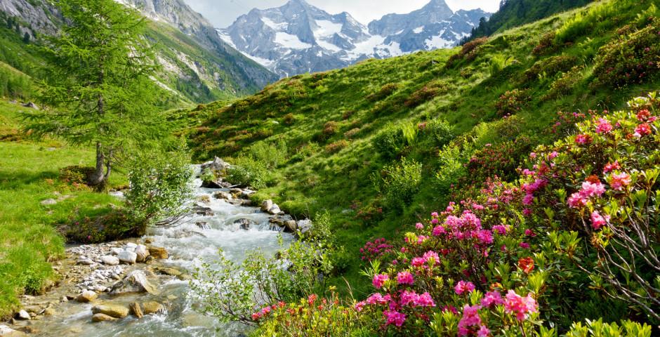 Faire de la randonnée à Zillertal - Uderns