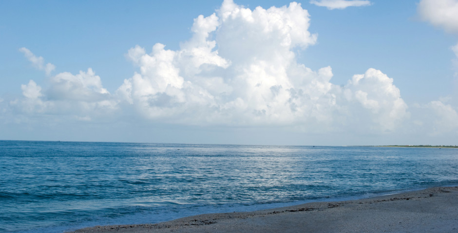 Plage - Marco Island