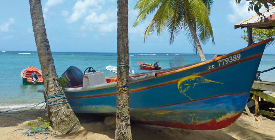 Boot am Strand - Martinique