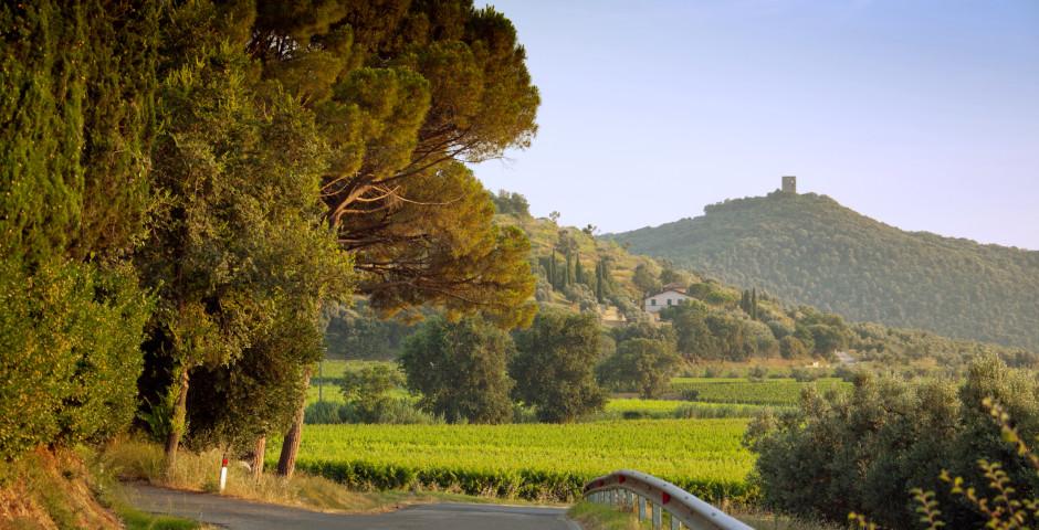 Vacances à Toscane