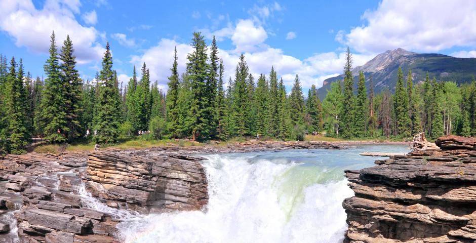 Athabasca Falls - Jasper
