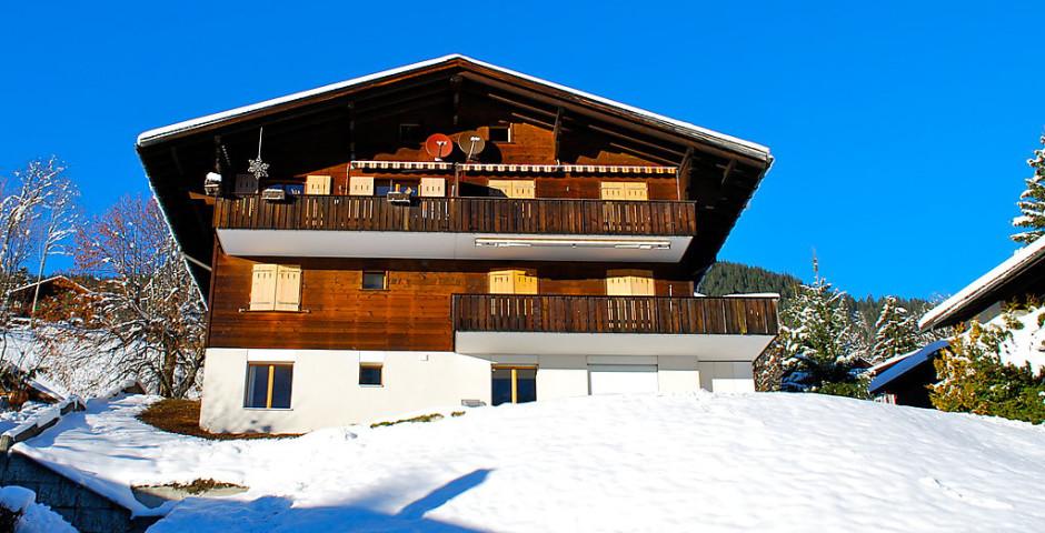Ferienwohnung Blaugletscher