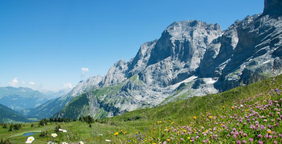 Berglandschaft - Ovronnaz