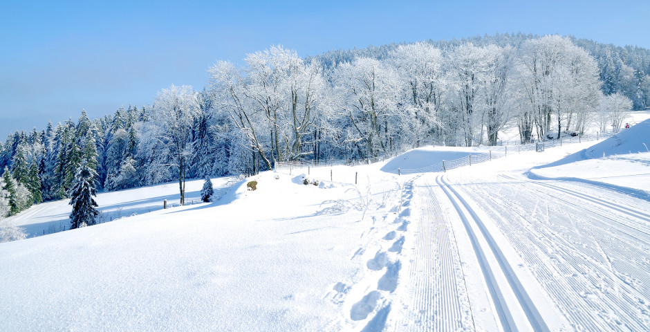 Winterlandschaft bei Bodenmais