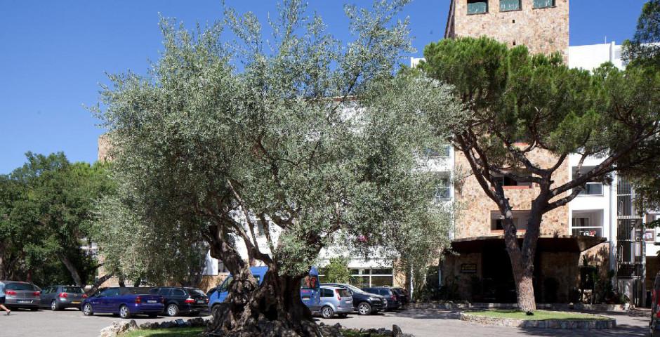 HTop Caleta Palace