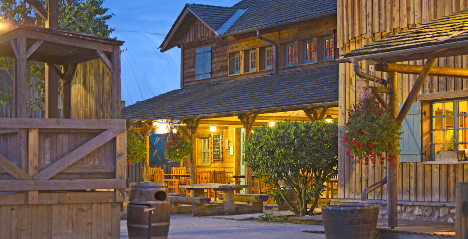 Disney's Davy Crockett Ranch - incl. entrée parc