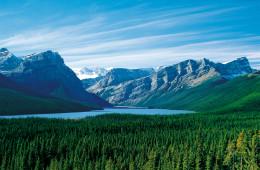 Rockies Trail