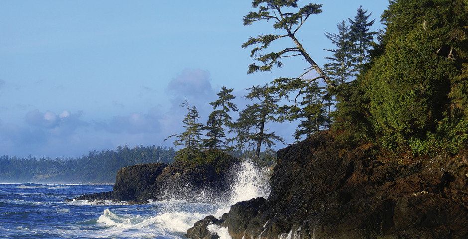 Pacific Rim National Park - A Taste of Vancouver Island & Sunshine Coast