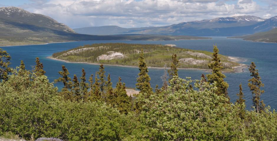 Yukon Experience