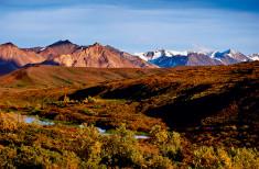 Bild 1 - Alaska-Yukon Explorer