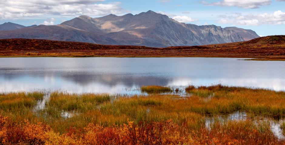 Denali National Park - A Taste of Alaska and Yukon