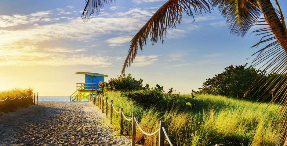 Florida Sunshine
