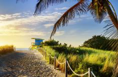 Bild 1 - Florida Sunshine