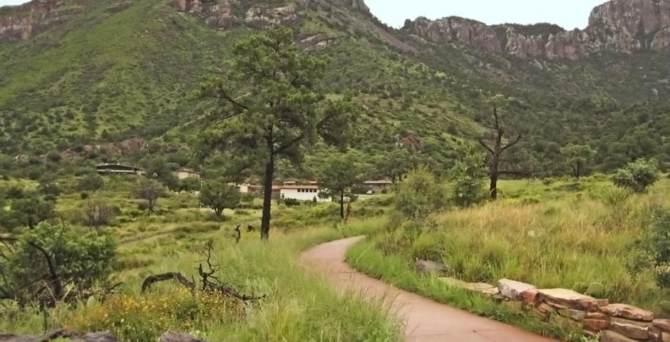 Chisos Mountain Lodge