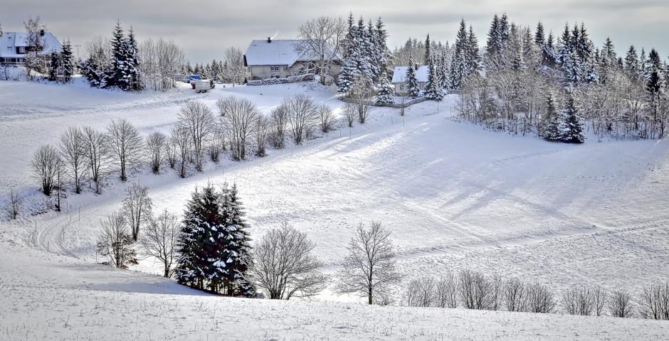 Dittishausen en hiver