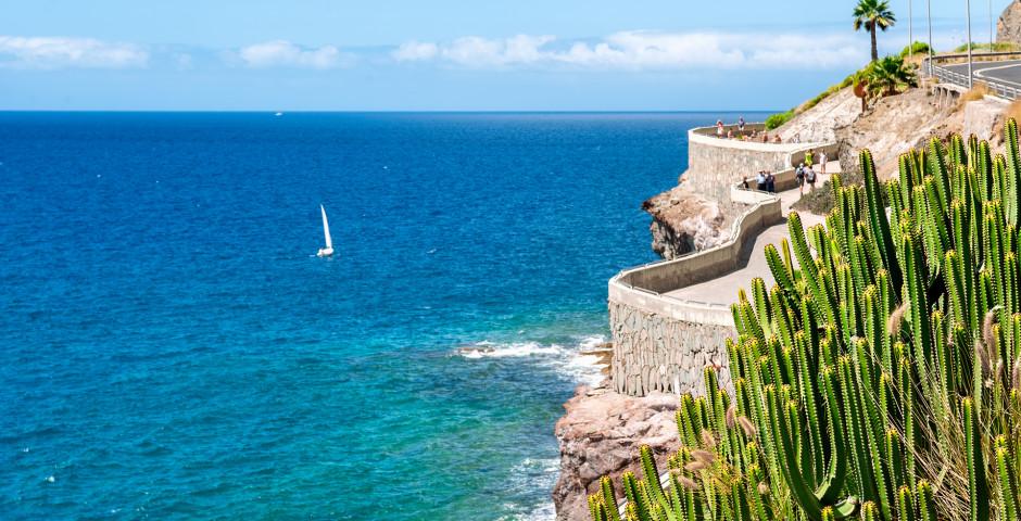 Küstenstrasse zwischen Playa de Puerto Rico und Playa de Amadores - Puerto Rico