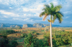 Bild 2 - Cuba Tradicional